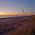 Beach at Dawn by Robin Lee
