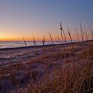 Beach at Dawn by Robin Lee