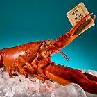 Lobster Tale... by supersnapper