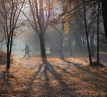 Misty morning by Vasil Popov