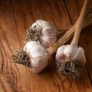 natural garlic  by marcelo de la torre