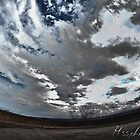 A reverse sky image of what the ground sees as it sky by Robert Smith