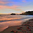 Horseshoe Bay Bowen NQ by bowenite