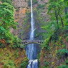 Multnomah Falls by Fred Seghetti