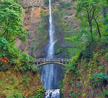 Multnomah Falls by Fred Seghetti