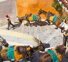 Donkey Train Yellow by Emma Holmes
