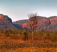 The Kimberley Vista by Andrew Dickman