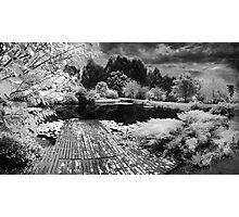 Pontoon Photographic Print