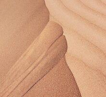 rSand dune by Dieter Berghmans