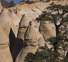 Tent Rocks by Tamas Bakos