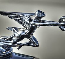 1934 Packard Super Eight Hood Ornament  by Saija  Lehtonen