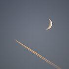 Shoot The Moon by Shilohlin Pfeiffer
