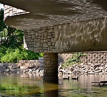 Reflection Under the Bridge by Ginadg73