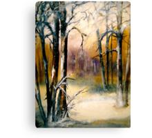 Sleeping...Winter... Canvas Print