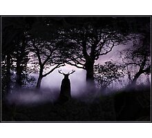 Shadow of Herne Photographic Print