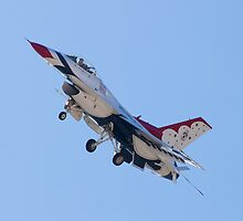 USAF Thunderbirds #4 Banking on Approach by Henry Plumley