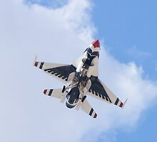 USAF Thunderbirds #6 On Approach by Henry Plumley