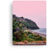 A Lonely Impulse of Delight Canvas Print