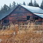 Winter Barn by rocamiadesign