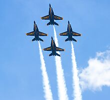 USN Blue Angels by Henry Plumley