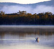 Early Morning fishing on the Myall Lakes Northern NSW by Virginia  McGowan