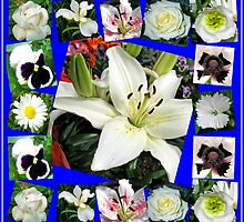 White Delight - Summer Flowers Collage by BlueMoonRose