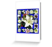 White Delight - Summer Flowers Collage Greeting Card
