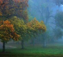 Solitude by Barbara  Brown