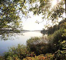 loch ken autumn by mitch24