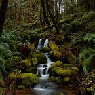 Let It Flow by Charles &amp; Patricia   Harkins ~ Picture Oregon