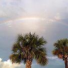 Chasing Rainbows by Kathy Baccari