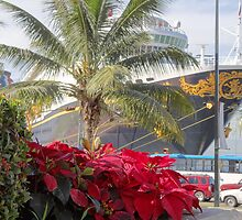 Poinsettia, palm tree and a cruise - Noche buena, palmera y crucero by Bernhard Matejka
