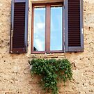 A Window In San Gimignano by Fara