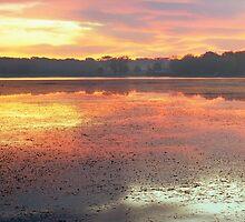 Stony Creek Lake by Bill Spengler