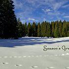 Season's Greetings ~ Austria ~ Europe by Sabine Jacobs