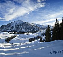 Joyeux Noel ~ Austria ~ Europe by Sabine Jacobs