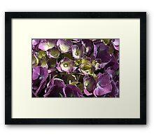 Living Beauty Framed Print