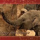 Little elephant stars - Merry Christmas by steppeland