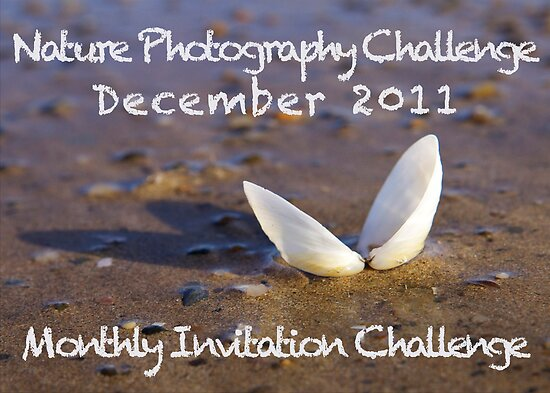 MonthlyChallenge Announcement Image by George Row