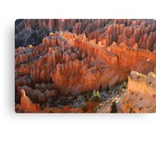 Sunrise From Bryce Point Canvas Print
