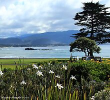 Pebble Beach's 18th Fairway by GreenSaint