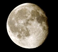 cratered moon by Steve