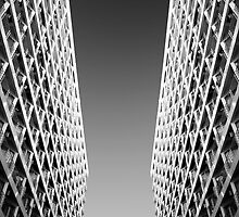 Joint Vision of Two Buildings In Black and White by vanyahaheights