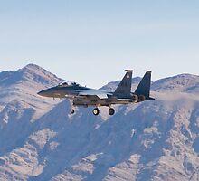 WA AF 90-0260 F-15E Strike Eagle by Henry Plumley