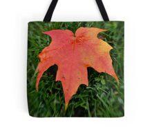 Oh Canada =) Tote Bag