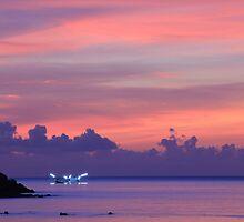 Koh Phangan sunset by Tamara Travers
