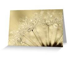 Dandelion Drops Greeting Card