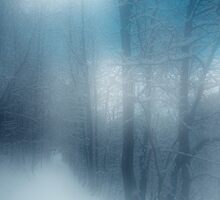 when I dream of winter by Dorit Fuhg