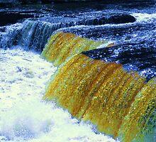 Aysgarth Falls in Wensleydale by Sue Gurney