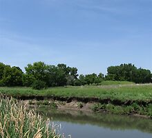 River Bank on the Kishwaukee by Gu88dek